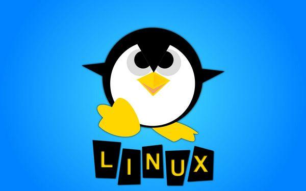Analisi sistemi linux
